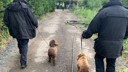 Dogs have been reunited with their owners after the raid at Willingham