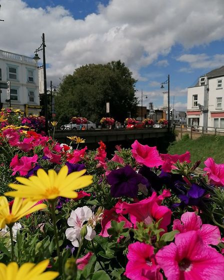 March in bloom 2020: We are delighted to be able to share these wonderful photos of March in bloom.