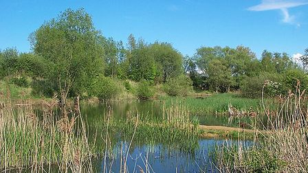 Lattersey Nature Reserve near Whittlesey. Pictures: Fenland District Council.