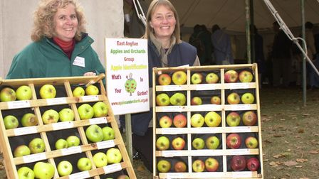 Ely Apple Festival 2020 has been cancelled due to safety concerns caused by the ongoing coronavirus