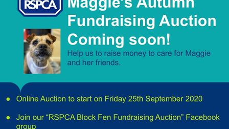 RSPCA Block Fen Animal Centre is holding an online fundraising auction to help raise money to care f