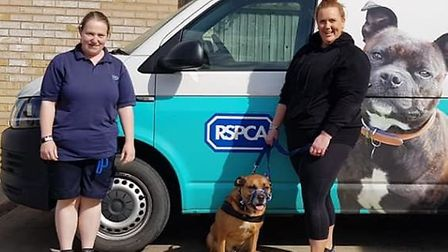 In other good news at RSPCA Block Fen, new forever homes have been found for long stay dog Buddy, wh