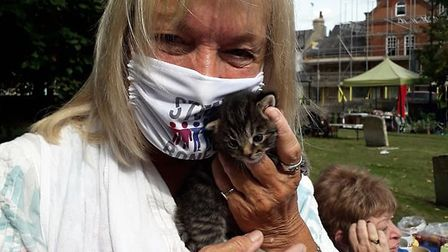 This little kitten stole the show at an event which was held at St Andrew's Church in Soham. Picture