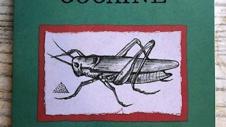 Finchingfield resident Nettie Firman's first published book called Crickets On Cocaine. Picture: Net