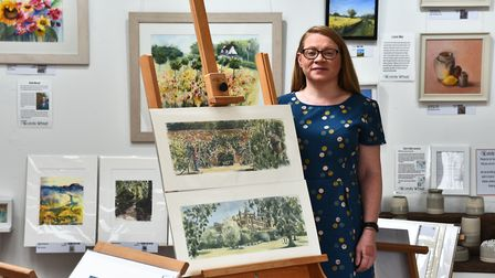 Mary Turley, owner of Wonky Wheel gallery, Finchingfield. Picture: Mary Turley