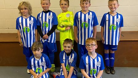 The Animal Experience has been named as the new kit sponsor for Stretham Sporting under 8s. Picture: