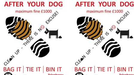 People in Great Yarmouth can send a postcard to their local council informing them of dog owners who
