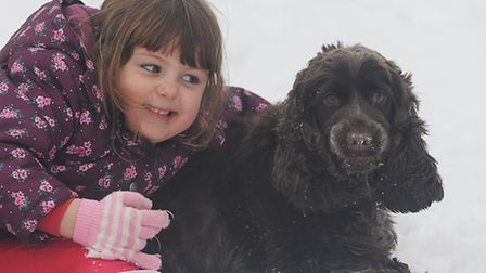 Summer Hollings (4) with her dog Pippin who was rescued from a frozen pond in Toftwood by Andy Kelly