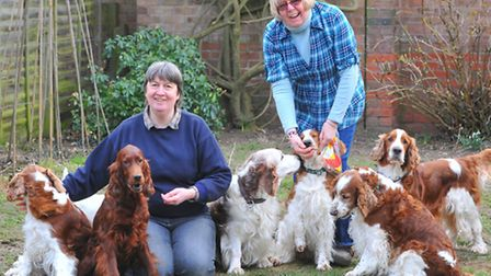Linda Lloyd, left, and Tricia Baker with some of their dogs. They are organising a dog show at Worst