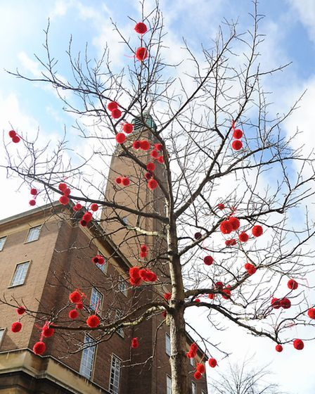 The yarnbombed tree by the City Hall clock tower covered in pom poms for Comic Relief Red Nose Day.