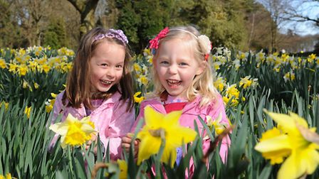 Sisters Hannah, left, 5, and Zoe Payne, 4, enjoy the daffodils at the Daffodil Craft and Country Fay