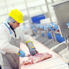 Cranswick Country Foods in Watton - On the production line. Picture; Matthew Usher.
