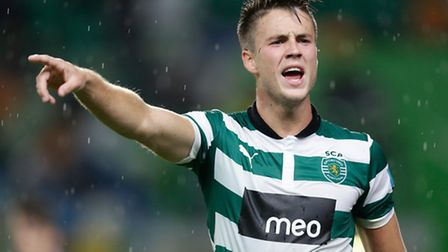 Michael Bailey answered reader's questions on Norwich City's new signing Ricky van Wolfswinkel at www.pinkun.com/debate