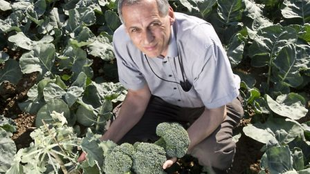 Professor Richard Mithen of the Institute of Food Research in Norwich is leading the studies to unde