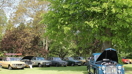 A Rover P4 pick-up and a row on P6s.