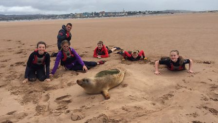 Exmouth Sea Cadets recruits its next member Sammy the Seal cadet!