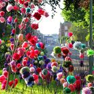 A dazzling display of colourful pom poms alongside Rolle Road for the Exmouth Festival Art Trail. Re