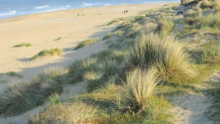 General views of the beach at Winterton looking South along the coast.Picture: James Bass