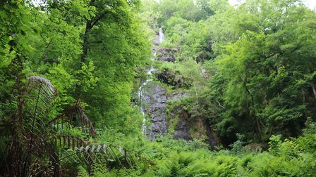 A day out at the beautiful Canonteign Falls. Picture: Denise Underwood
