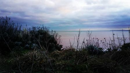A few more of Budleigh. Picture: Clive Sluter