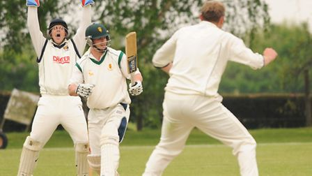 Norfolk against Lincolnshire in the MCCA Knockout Trophy. Norfolk wicket keeper Stephen Gray. Pictur