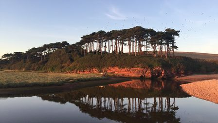 Refelction at Budleigh seafront. Picture: Luke Hopkins