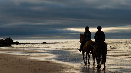 Horses riding on Exmouth beach. Picture: Alex Walton Photography