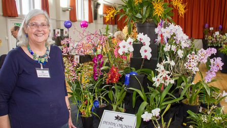 Nicky Wakley, chairman of The Devon Orchid Society at the Budleigh Orchid show. Ref exb 20-17TI 2953