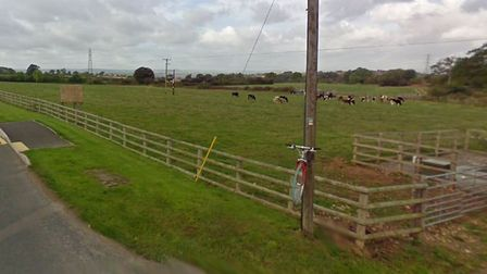 Agricultural land opposite Woodbury Business Park which could become an overspill car park. Picture: