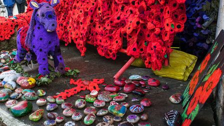Smilestones feature as part of the poppy display. Picture: Jean Holden