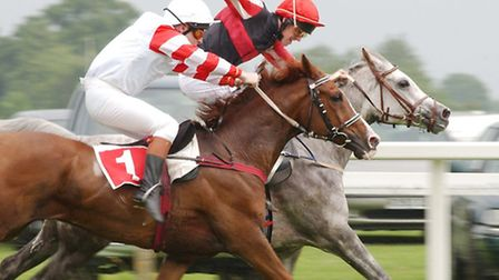 Action from a previous Arabian racing event at Fakenham Racecourse.