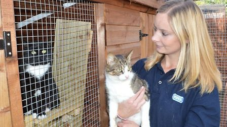 RSPCA volunteer Faye Howard with Bambi, a female who came in a terrible state with red raw skin, and
