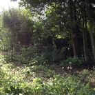 The area next to a proposed footbridge over the dyke between Castle Green and Blake Drive, Bradwell,