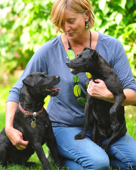 Delia Robinson pictured with reunited ' husband and wife ' Patterdale terriers Bear ( red collar ) a