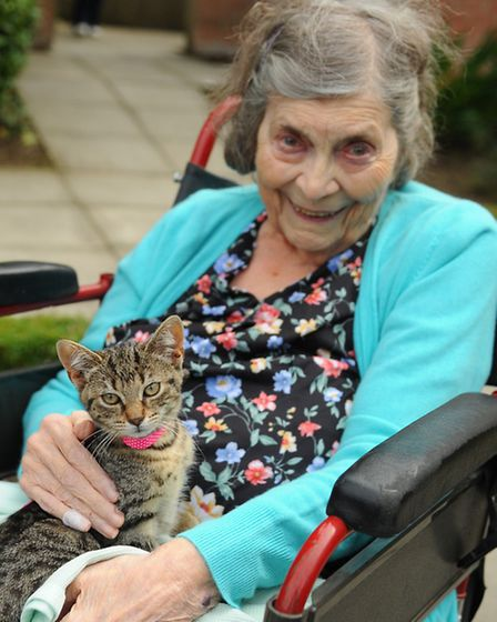 Animals and reptiles from Zoo-Tastic visit the residents at Oakwood House at Colney, with children f