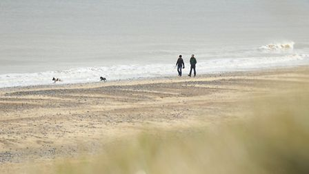 View of the coast off Winterton where a Humpback Whale was seen swimming. Picture: James Bass