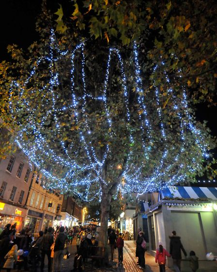 Trees in Gentlemans Walk, Norwich adorned with Christmas lights on the night of the big switch-on in
