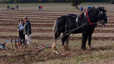 Norfolk Ploughing Society match, North Elmham, Arthur Clouting and Chris Thomas.