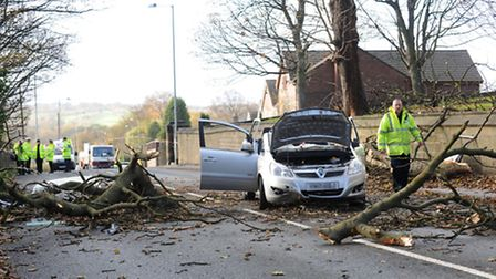 Drivers should be aware of the risk of trees and branches being blown down.