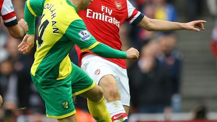 Wes Hoolahan was introduced late on against Arsenal as Norwich City went for broke to salvage a Premier League point.
