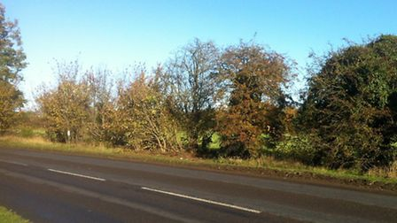 The scene of a crash in which a 29-year-old man has died in Brandon Road, Weeting