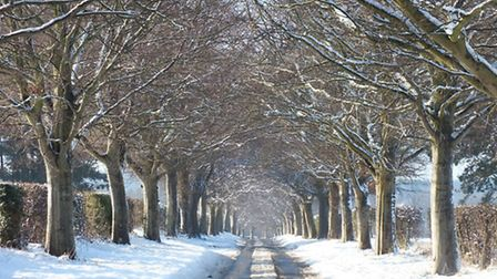 'Norfolk is Snowy Country Lanes'. Photo by Paul Reynolds
