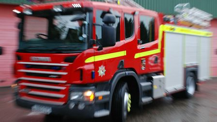 Firefighters were called after a tree fell down at a fireworks display in Taverham.