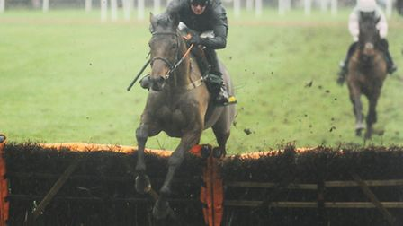 Fennel Bay won the 2nd race of the day at Fakenham Racecourse. Picture: Ian Burt