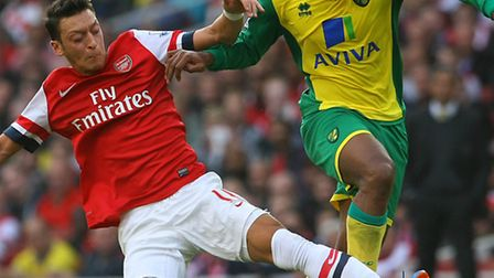 Norwich City midfielder Leroy Fer admitted he struggled to adapt to the Premier League after his sum