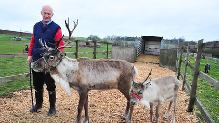 Trevor Lay of Mettingham runs a wildlife centre and owns and sells reindeer which he takes to places