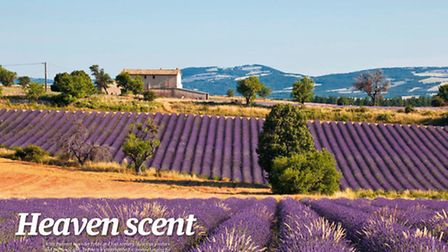 Explore Drome in the October issue of Living France