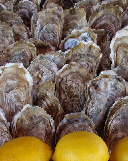 Marennes-Oléron is the largest oyster cultivation area in Europe ©CMT17 E. COEFFE