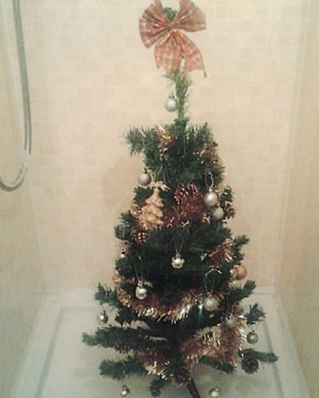 Christmas tree in the shower!