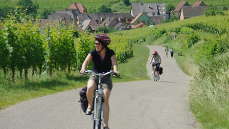 Cycle around Alsace with Freewheel Holidays